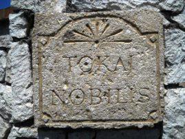 NOBILIS FELIRAT